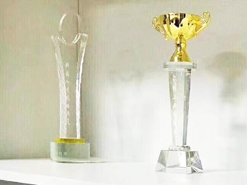 美亚荣誉奖杯